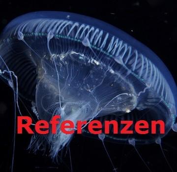 jellyfish_pacificklaus_auftraggeber_innen