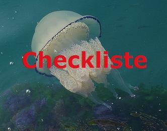 qualle_me_maya_checkliste2
